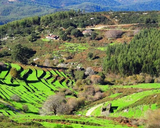Omgeving : West Algarve