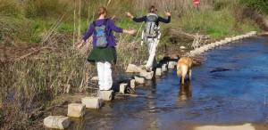 Wandelcoach sessie ; stappenplan loopbaanadvies The Art of Joy Monchique Algarve